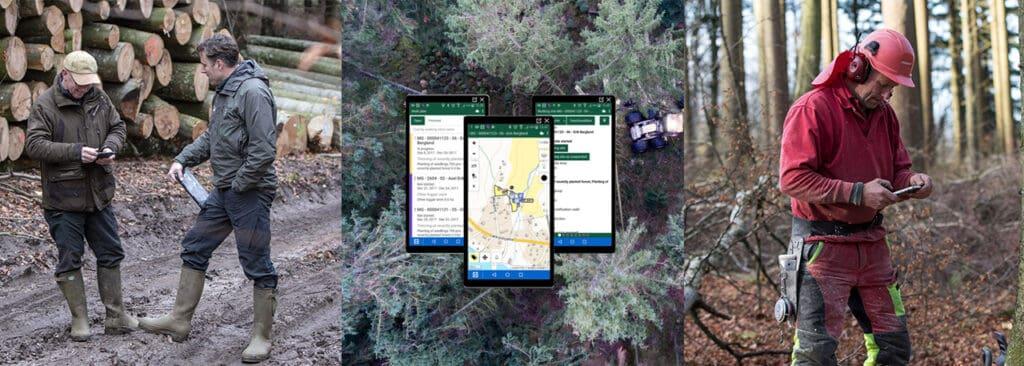 digitalisering av skogsindustrin