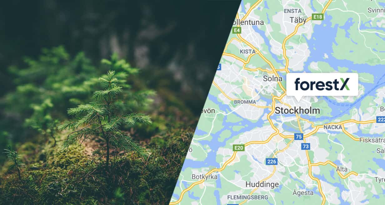 ForestX Stockholm
